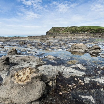 The Captivating Catlins3